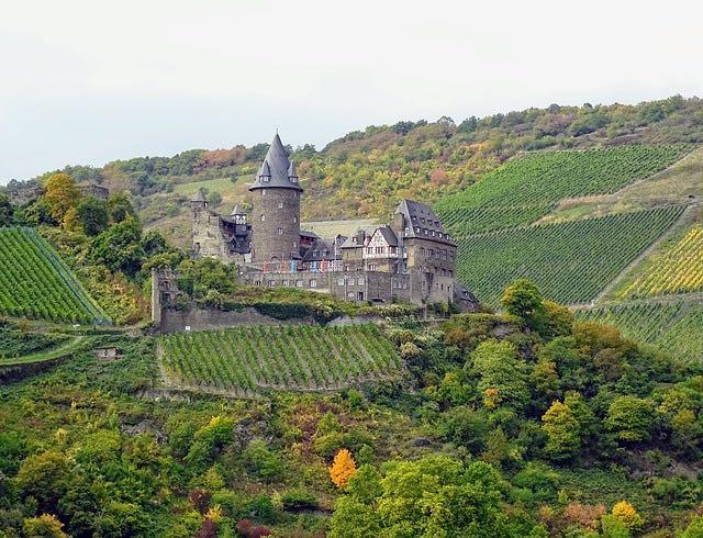 A la découverte de régions viticoles