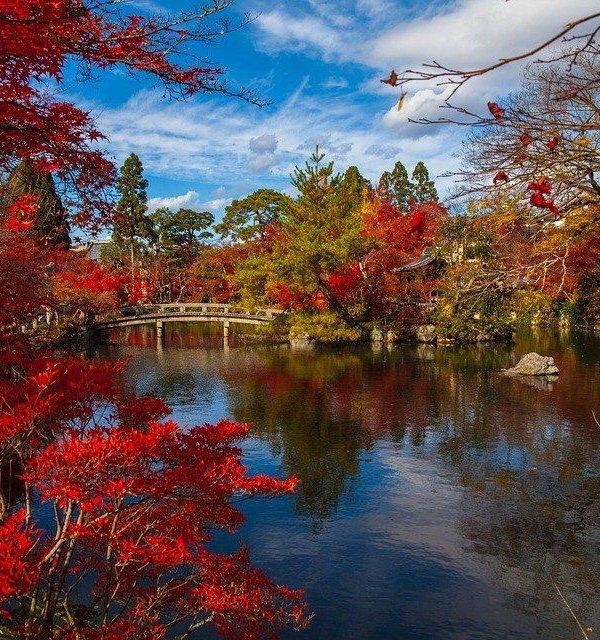 4 idées d'activités pour parfaire un périple au Japon